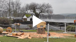 Live Chainsaw Wood Carving in the Lake District