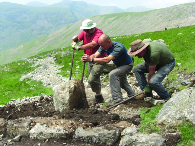 Nurture Lakeland Restoration Projects